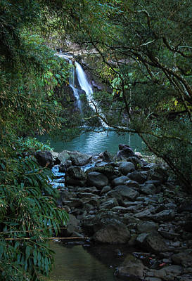 Poster featuring the photograph Waterfall  by Cathy Donohoue