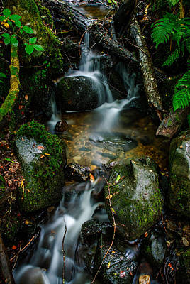 Waterfall In The Woods Poster