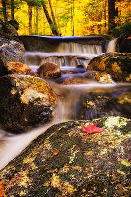 Waterfall With Red Maple Leaf. Poster