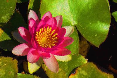 Waterlily Impression In Fuchsia And Pink Poster by Georgia Mizuleva