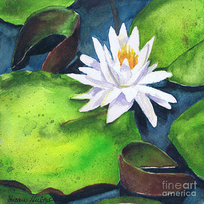 Poster featuring the painting Waterlily by Susan Herbst
