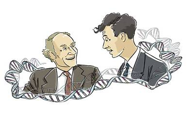 Watson And Crick Poster by Harald Ritsch