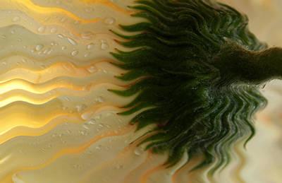 Waves Of Joy Poster by Krissy Katsimbras