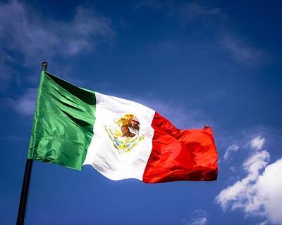 Waving The Mexican Flag Poster