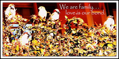 We Are Family Poster by Bobbee Rickard