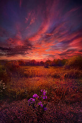 We Find Our Own Story Poster by Phil Koch