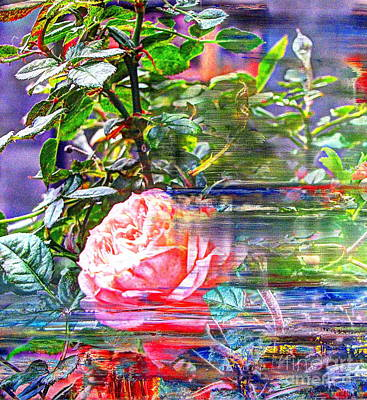 We Love Roses Outside The Window Poster
