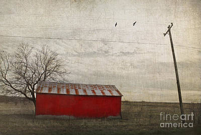 Weathered Red Barn Poster by Elena Nosyreva