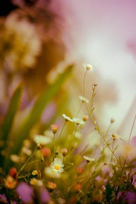 Weeded Desire - Light Poster