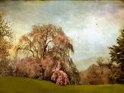 Weeping Cherry Poster by Jessica Jenney