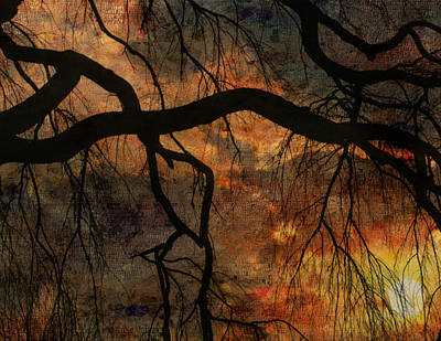 Poster featuring the digital art Weeping Willow Sunset by Bruce Rolff