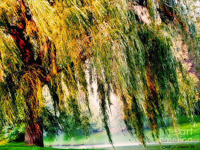 Weeping Willow Tree Painterly Monet Impressionist Dreams Poster