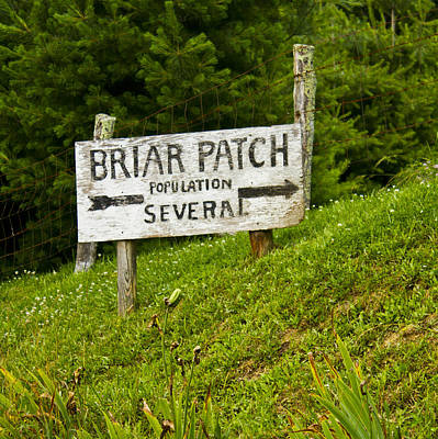 Welcome To Briar Patch Poster