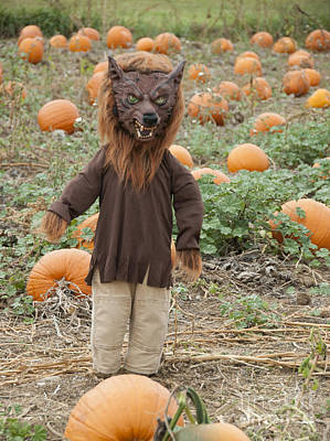 Werewolf In The Pumpkin Patch Poster by Juli Scalzi