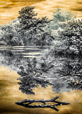 Poster featuring the photograph West Brook Pond by Steve Zimic