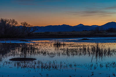 Poster featuring the photograph Wetland Twilight by Beverly Parks