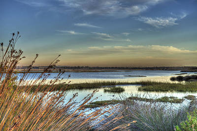 Wetlands Sunset Poster by Richard Stephen