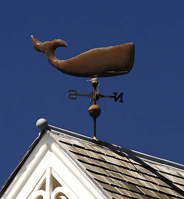 Whale Wind Vane Poster by David Lee Thompson