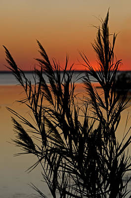 Whalehead Sunset Obx II Poster