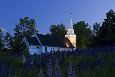 White Church At Dusk In A Field Of Lupines Poster