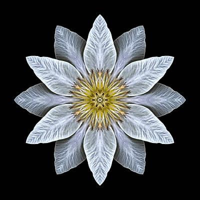 White Clematis Flower Mandala Poster