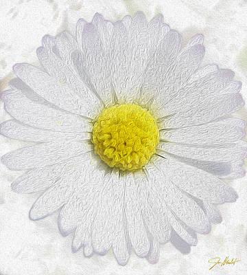 White Daisy On White Poster by Jon Neidert