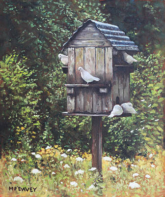 White Doves Using A Dovecote  Poster by Martin Davey
