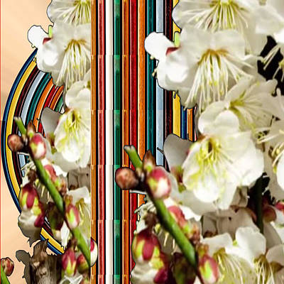White Flower Medley Colorful Rainbow Stripes On The Backdrop Artist Navinjoshi  Poster