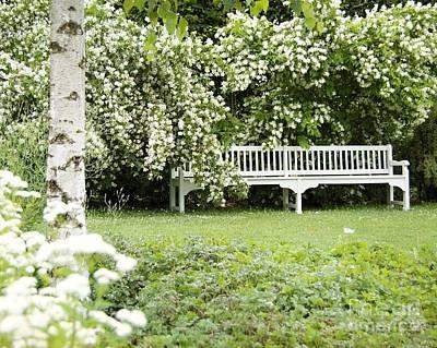 White Garden Iv Poster