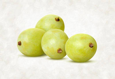 White Grapes Poster