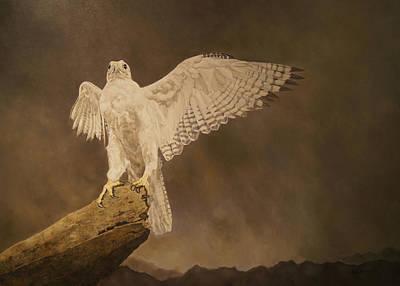 White Gyrfalcon... Poster by Erna Goudbeek