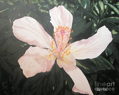 White Hibiscus In Acrylic Poster
