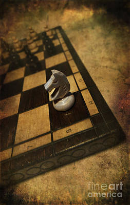 White Horse On The Chess Board Poster