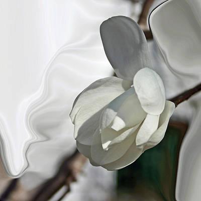 White Magnolia Series 510 Poster