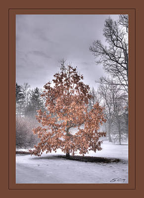 Poster featuring the digital art White Oak In Fog  Framed by Ed Cilley
