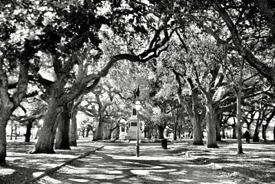Poster featuring the photograph White Point Gardens At Battery Park Charleston Sc Black And White by Lisa Wooten