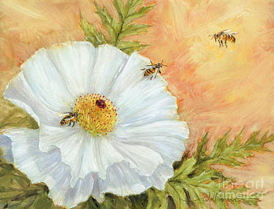 White Poppy And Bees Poster