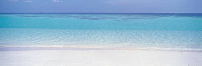 White Sand Beach Poster by Panoramic Images