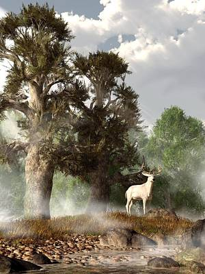White Stag On A Misty Morning Poster by Daniel Eskridge