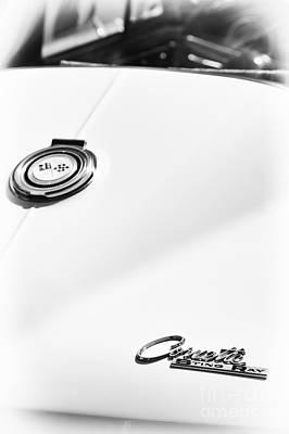 White Sting Ray Poster