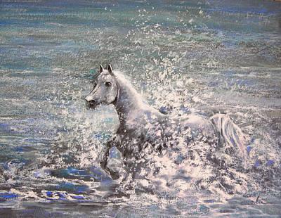 White Wild Horse Poster by Miki De Goodaboom