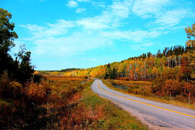 Poster featuring the photograph Whiteshell Provincial Park by Larry Trupp