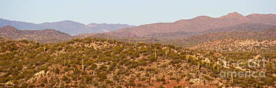 Wickenburg Mountains Poster by Suzanne Oesterling