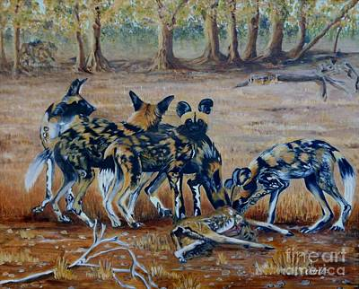 Wild Dogs After The Chase Poster by Caroline Street