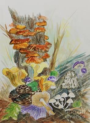 Wild Edible Mushrooms Poster by Ellen Levinson