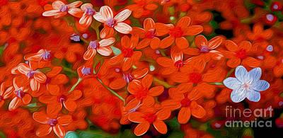 Wild Flowers Poster by Jon Neidert