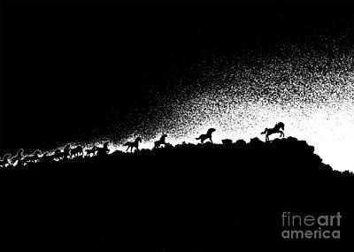 Wild Stallions Silhouette Poster
