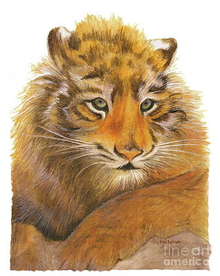 Poster featuring the painting Wild Tiger Cub by Nan Wright