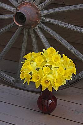Poster featuring the photograph Wild West Daffodils by Diane Alexander