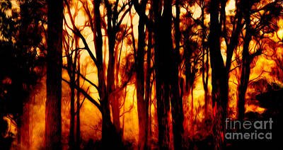 Wildfire Poster by Phill Petrovic